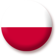 Enter Polish website